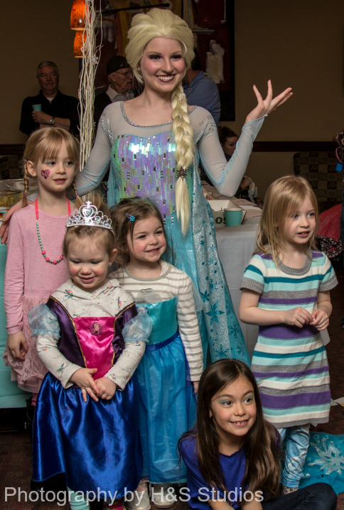 My Perfect Princess Party Elsa